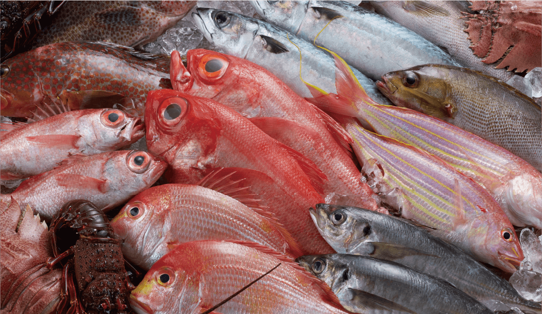 Not only the home for Castella and Champon, Nagasaki is a fish-lover's paradise!